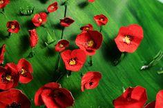 Poppy Field by Faye Rogers, via Behance