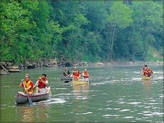 Green River in Mammoth Cave National Park has been classified a Kentucky Wild River. The area is a favorite for canoeing and wildlife watching. #kentucky #mammothcave #greenriver