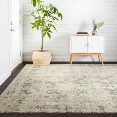 Bloomsbury Market Diez Oriental Tealish blue Area Rug Rug Size: Rectangle x Light Blue Area Rug, Navy Blue Area Rug, Beige Area Rugs, Natural Area Rugs, Grey Stone, Outdoor Area Rugs, Online Home Decor Stores, Antique, Inspired