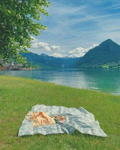 Nature Aesthetic, Summer Aesthetic, Aesthetic Photo, Aesthetic Pictures, Picnic Date, Northern Italy, Oui Oui, Pretty Pictures, Aesthetic Wallpapers