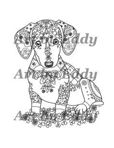 Weiner Dog Clipart Image: Cute adult weiner dog or