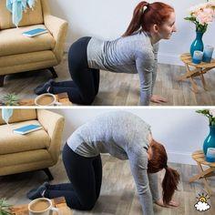 cat-cow stretch