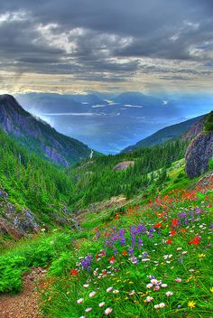 """View from the Saddle"", near the top of the saddle route up Mount Arrowsmith, Nanaimo, British Columbia, Canada"