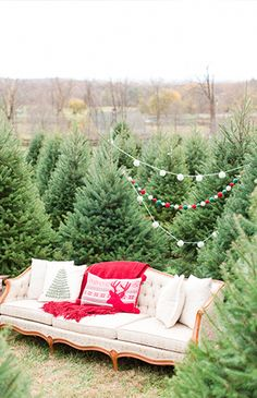 Romantic Anniversary Photos at a Christmas Tree Farm - Inspired By This