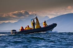 Tofino Accommodation & Activities | The Official Tourism Tofino