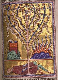 1-Folio 70r- Salamandras -© Aberdeen University Library
