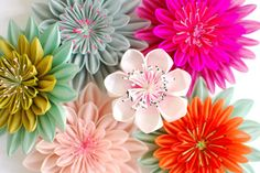 Karuna Balloo - Fabric Flowers