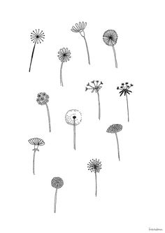 This bundle includes 50 unique botanical floral illustrations which you can use for logos, invitations, stationery, patterns and much more. This design kit is drawn in Illustrator, vector based and high quality. Bullet Journal Notebook, Bullet Journal Ideas Pages, Bullet Journal Inspiration, Cute Tattoos, Small Tattoos, Floral Drawing, Drawing Flowers, Flower Doodles, Floral Illustrations