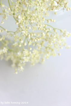 Eine Hommage an den Friday Flowerday... #flowers #decoration #Blumen #elderflowers #Holunderblüten