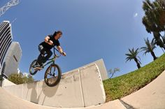 BEAUTIFUL photo of Miami shredder Andres Velez with a DIALED hangover tooth on the Bayside ledge. Photo by: JP Davies