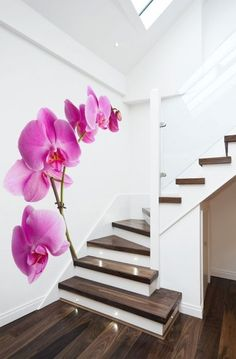 Orchid on the Wall Mural by Eazywallz