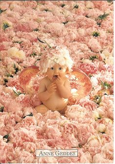 Anne Geddes The reason my passion belongs to photography