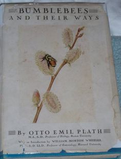 'Bumblebees and Their Ways' - the scientific book on bees authored by Sylvia's father. He was considered an renowned expert on the subject.