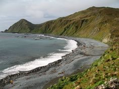 Macquarie Island (or Macca) lies in the southwest corner of the Pacific Ocean, about half-way between New Zealand and Antarctica, at 54°30S, 158°57E. Politically, it is part of Tasmania, Australia since 1900 and became a Tasmanian State Reserve in 1978. In 1997 it became a World Heritage Site. It was a part of Esperance Municipality until 1993, when the municipality was merged with other municipalities to Huon Valley. The island is home to the entire Royal Penguin population on earth during