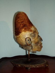 Elongated Peruvian Mummy Head..(this is creepy and crazy)