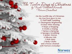 We're closing out the Twelve Days Of Christmas with one more song! Thanks to Norwex Consultant Nicole Willette Koranda for her rendition of The Twelve Days of Christmas - Norwex Style! How are YOU getting in the holiday spirit?