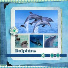 science scrapbook page made with  Spring Showers Kit dolphins