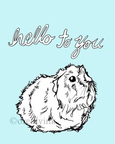Hello to You Guinea Pig Print $12 #etsy
