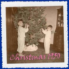 Google Image Result for http://www.gallimauphry.com/Xmas/photo.jpg