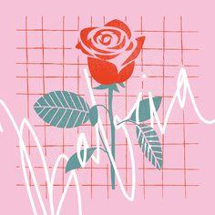 Rose for  Grandma Illustration