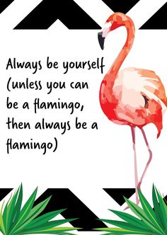 Be yourself always (unless you can be a flamingo, then always be a flamingo)