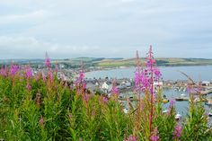 Gorgeous view of #Stonehaven Harbour in #Scotland by @lesleymyrick