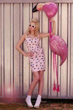 #editorial #pink #flamingo