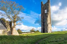 The Yellow Steeple In Trim County Meath [Ireland]