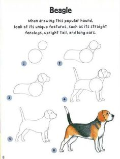 Latest Pic dog drawing tutorial Popular Wish to learn to draw? You're in the right place. Whether you're a starter searching for some su Drawing Lessons, Drawing Techniques, Drawing Tips, Drawing Sketches, Art Lessons, Drawing Tutorials, Drawing Drawing, Drawing Ideas, Learn Drawing