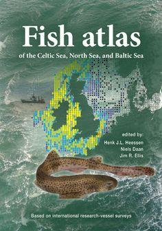 Fish Atlas of the Celtic Sea, North Sea, and Baltic Sea: Based on International Research-Vessel Surveys 2015 Pelagic Fish, History Magazine, British Wildlife, Marine Fish, Marine Biology, Sea Fish, Wildlife Conservation, North Sea, Baltic Sea