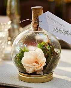 Striking DIY Terrarium Place Holders