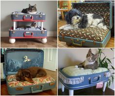 Upcycled Vintage Suitcase Pet Bed!
