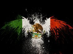 Best Mexican photo representing Mexican national flag, good idea for a modern national Mexican flag representing Mexico