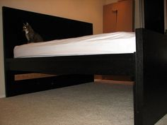 Best Bed Risers For Ikea Malm Bed In 2019 College Life Ikea 400 x 300