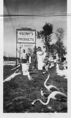 Gene O'Berry- Creator of the concrete pink flamingo in Florida. Each one hand poured and painted. Vintage Florida, Old Florida, Florida Vacation, Rock Mulch, Roadside Signs, Winding Road, Visual Diary, Garden Statues, Pink Flamingos