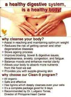 clean 9 forum
