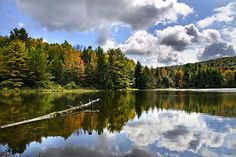 Beautiful Reflections Landscape by Christina Rollo. Beautiful scenic fall landscape with colorful trees, blue sky and puffy clouds reflecting on the surface of the water in rural upstate NY. Aqua-Terra Park is a Broome County park with lots of wildlife and many nature trails for hiking, located in Binghamton NY, USA.   SHOP MY COMPLETE COLLECTION AT:  www.rollosphotos.com