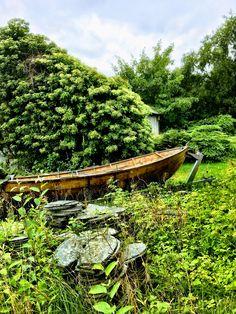 Båt i hagen