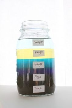 Ocean Zones in a Jar Science Experiments Kids, Science Fair, Science For Kids, Science Projects, Summer Science, Science Chemistry, Earth Science Lessons, Weather Science, Weather Unit