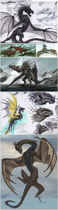The Elder Scrolls V Skyrim - Dragon concept art by the late Adam Adamowicz