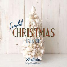 . 完売してしまったアイテムがちらほら出ておりますが、シェルルのクリスマス雑貨、絶賛発売中です . . #shellulu #christmas #xmas #christmastree #starfish #tree #coastal #beachxmas #beach #beach #beachpeople #merrychristmas #happyxmas #surfstyle #beachstyle #mermaid #ornament #shell #shellornament #オーナメント #シェル #スターフィッシュ #クリスマス #クリスマスツリー #海辺のクリスマス #シェルル #スターフィッシュ