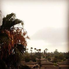 Gray skies in Orange County California.  #grayskies #graysky #overcast #tustinca #tustincalifornia #tustin #california #travellocal #outplanettravel