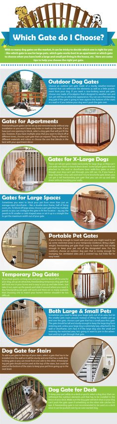 How to choose the right dog gate for apartments, outdoors, stairs, large dogs and more.