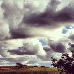 Leuchars sky in Scotland #cloud #cloudporn #sky #skyporn #field #harvest #tree #blue #white #grey #fluffy #crops #summer