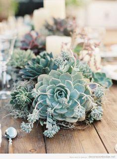 Decorar centro mesa con plantas carnosas como la suculenta