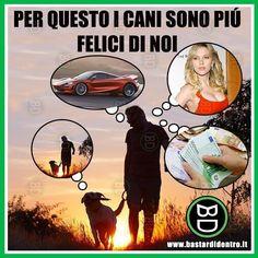 Il segreto della #felicità ... #bastardidentro #perfettamentebastardidentro #cani #uomini www.bastardidentro.it
