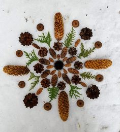 Mandala Nature, Nature Collage, Winter Art, Environmental Art, Patterns In Nature, Nature Crafts, Outdoor Art, Art Plastique, Garden Art