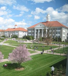JMU....happiest place on earth! :D (PS...I lived in the building where this photo was probably taken from.  Ashby Hall!)