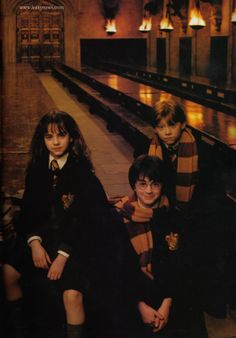 So we have Ron, looking like he just ate some slugs, Harry looking like the next gay Dumbledore, and then we have Hermione, looking like she just füçkíńg killed somebody.... XDDD