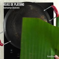 Video de Pollo Pibil Prepare this rich and juicy chicken with the touch of Yucatecan cuisine; since it is cooked to the pibil. Buzzfeed Food Videos, Buzzfeed Tasty, Cooking Time, Cooking Recipes, Cooking Crab, Salt Block Cooking, Cooking Appliances, Cooking Utensils, Cooking Spoon